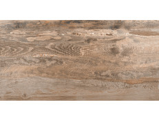 Spanish wood SP 02 60x120x1,1 Natural